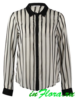 блузка в полоску и блузка в клетку