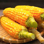 свойства кукурузы