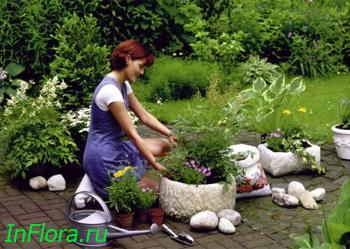 Идеи для сада и дачи металлический