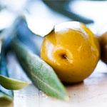 http://www.inflora.ru/img/olives.jpg