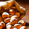Польза да свойства орехов