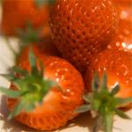 ягода клубника фото