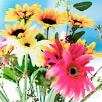 лечение цветами